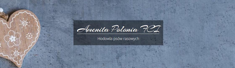 Amenita Polonia FCI
